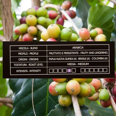 Gimoka Lungo Kapsül Kahve 10 X 2 Yoğunluk : 6